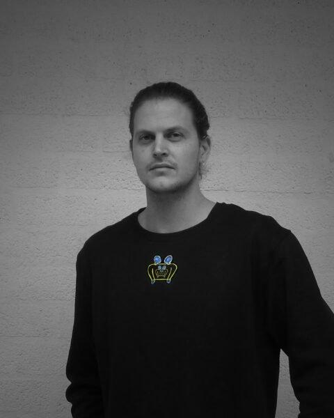 Frank Willems, kunstenaar