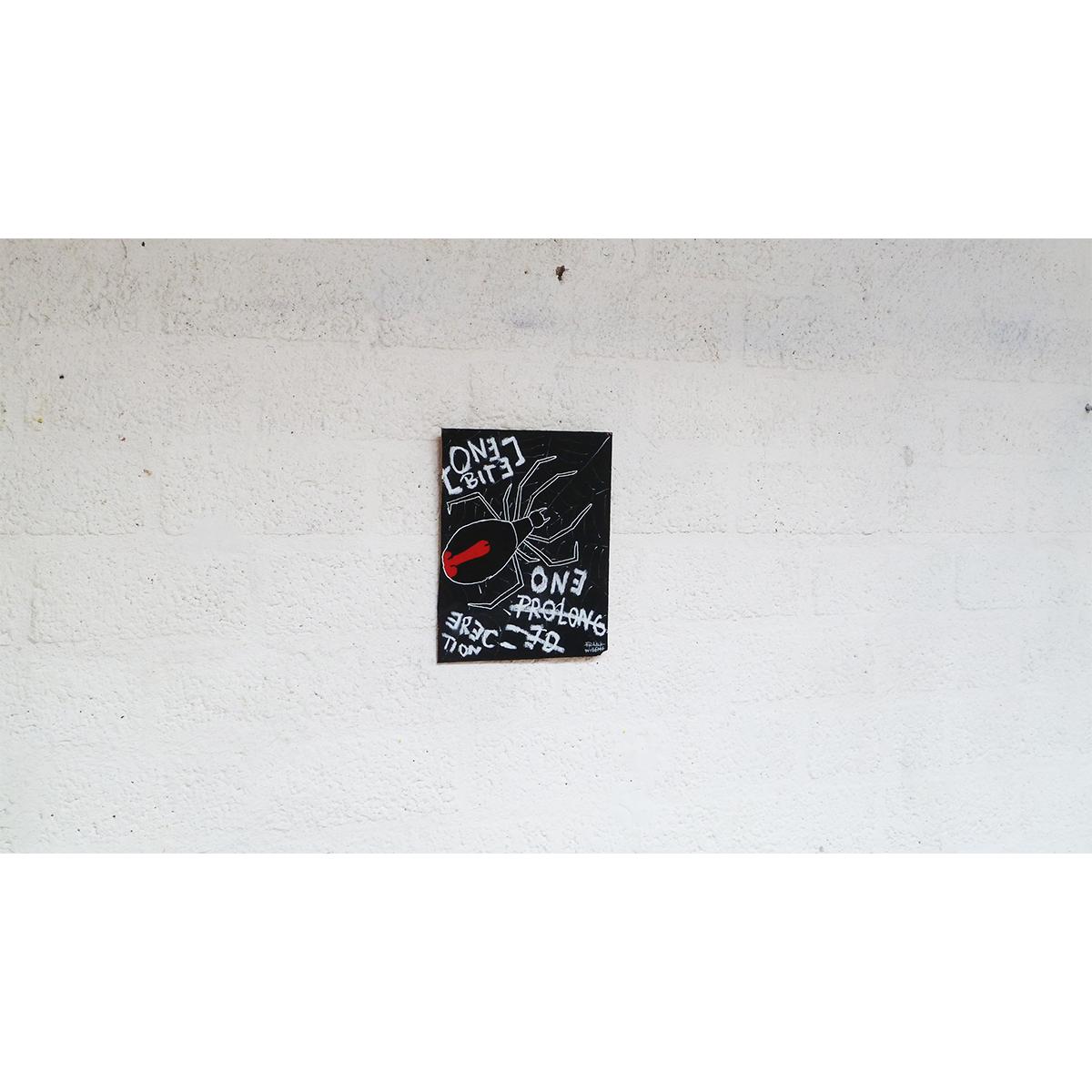 BLACK WIDOW 01 - Frank Willems