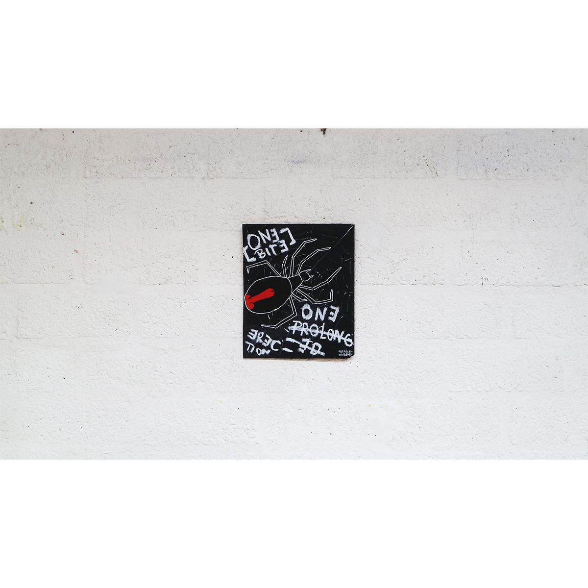 BLACK WIDOW 02 - Frank Willems