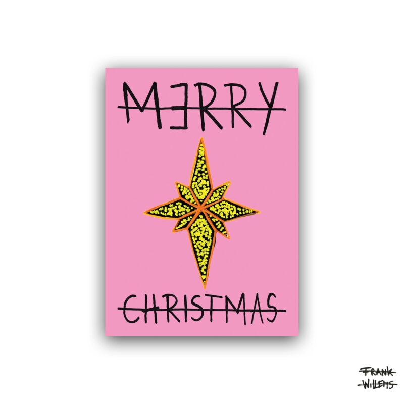 Kerstkaart - STAR - pink - Frank Willems
