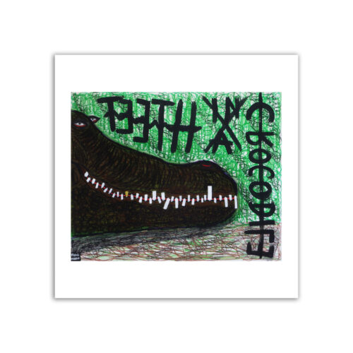 Limited prints - TEETH IN A CROCODILE - Frank Willems